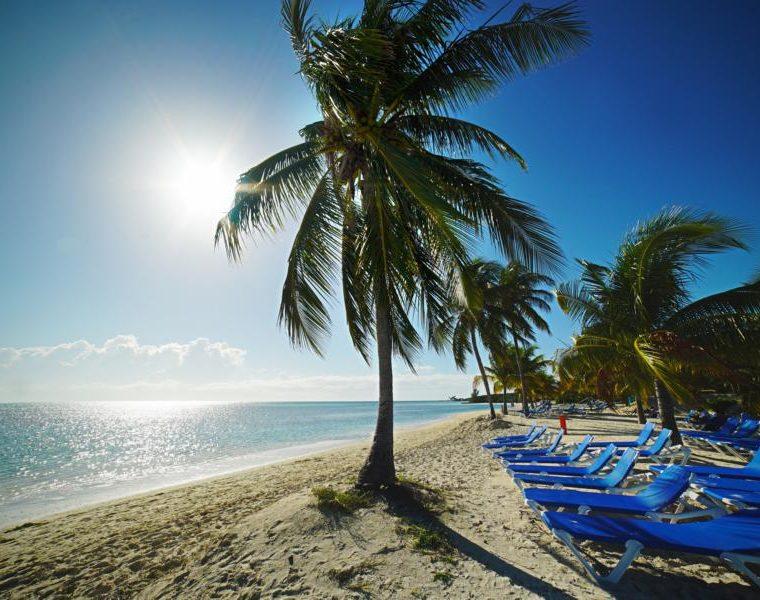 Palmen am Strand, Bahamas Rundreise