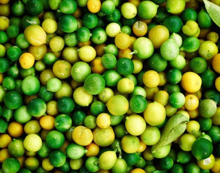 Limetten für Key Lime Pie