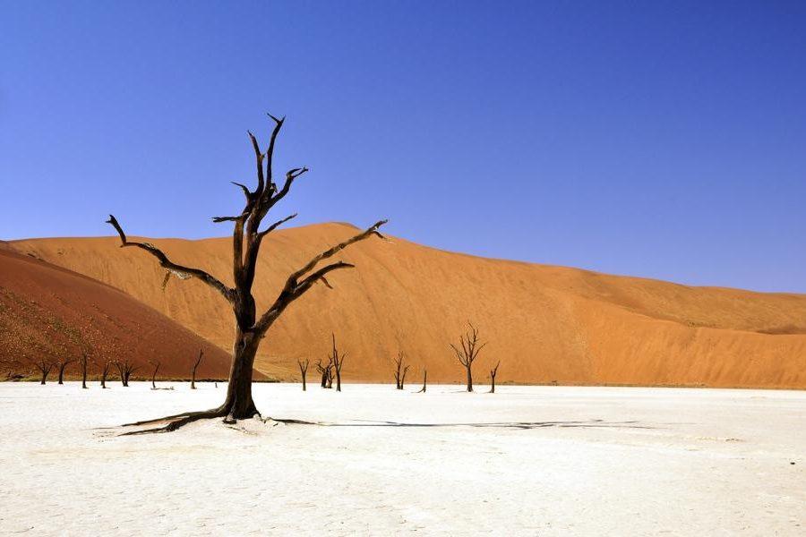 Roter und weißer Sand, Namibia Rundreise