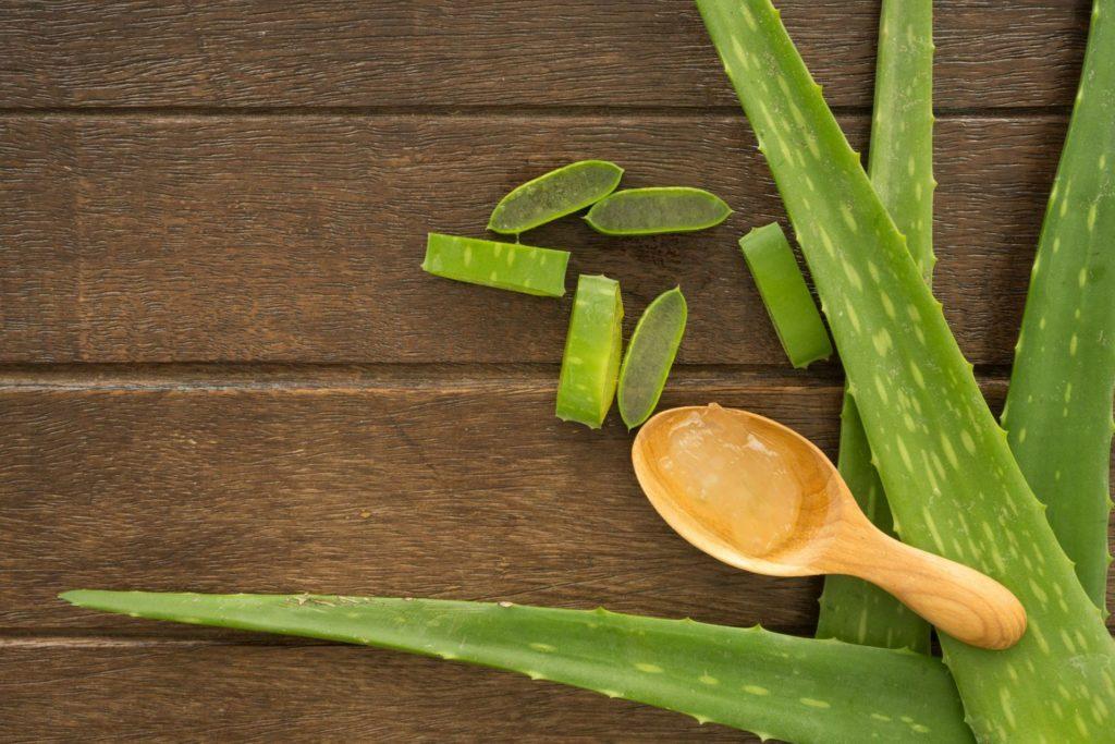Aloe Vera gegen Sonnenbrand - Hausmittel bei Urlaubsleiden