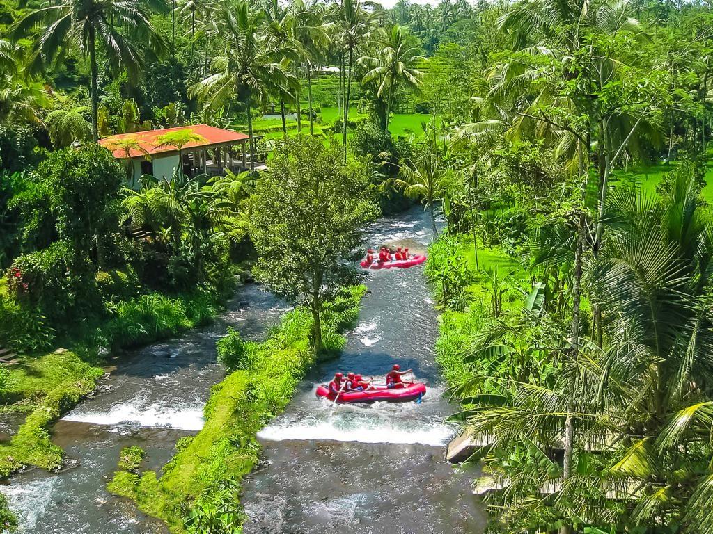 Rafting im Ayung River. Bali
