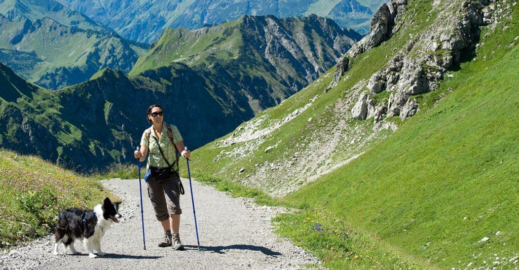 Wandern mit Hund in den Alpen.