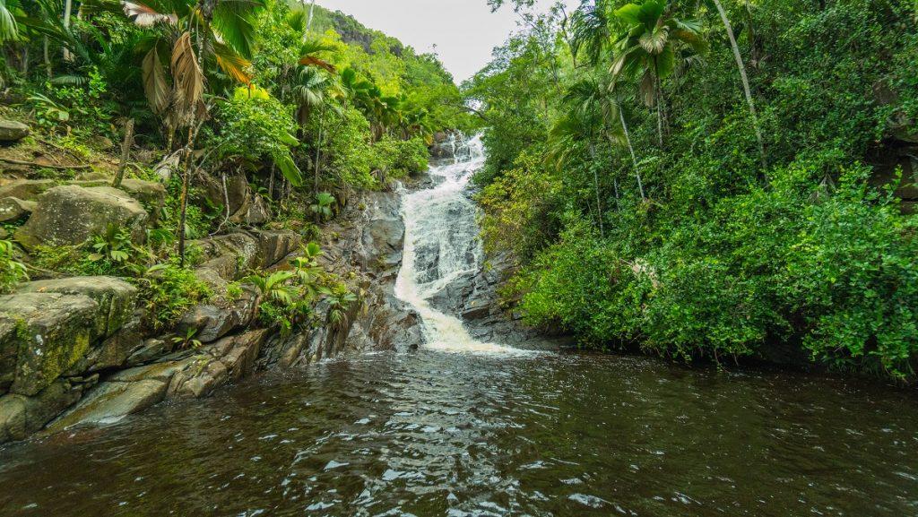 Waterfall auf den Seychellen